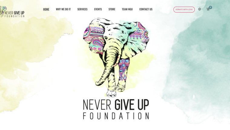 Never Give Up Foundation